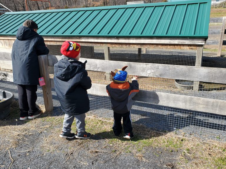A Guide to Massanutten For Families Who Love To Travel