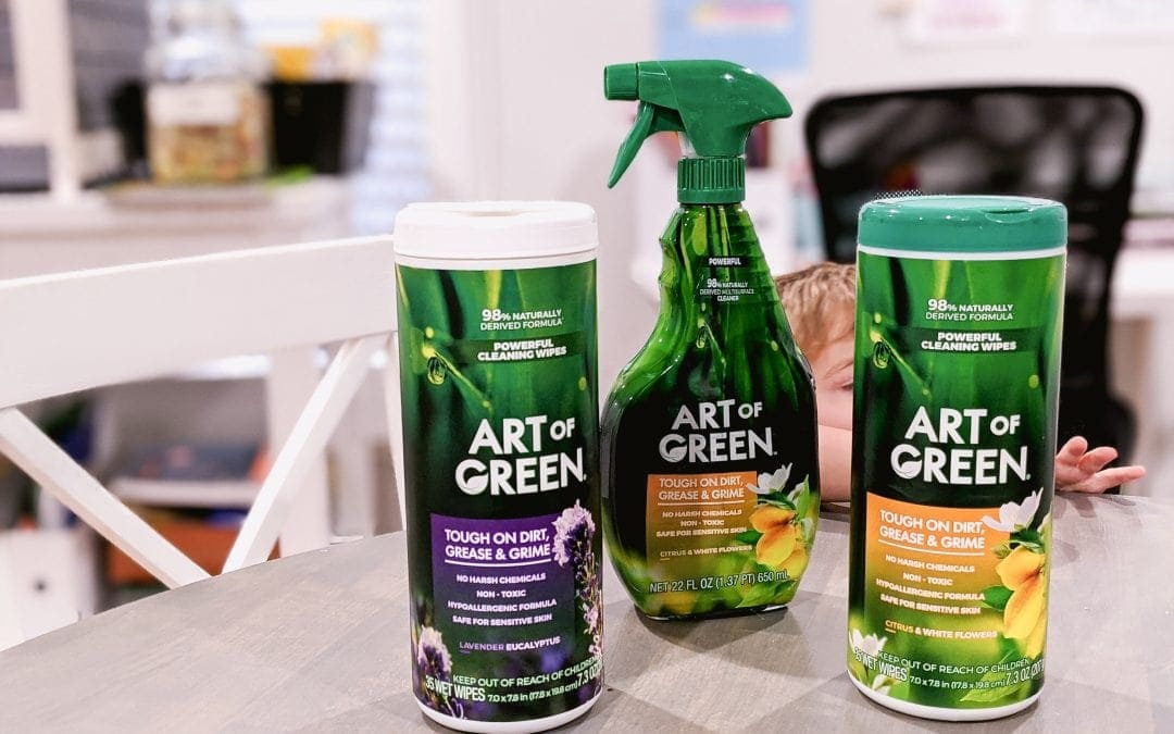 Art of Green Review – Do Affordable Green Cleaning Products Work?